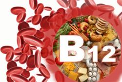 Витамин В12 в организме